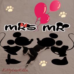 freetoedit kittysmash1 kittyluvkillu mouseandcat cat