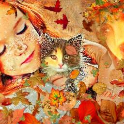 baby cat wappapereffect wapautumnvibes magic freetoedit