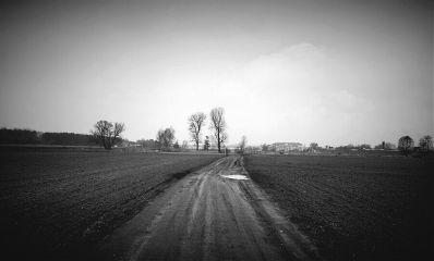 freetoedit road blackandwhite