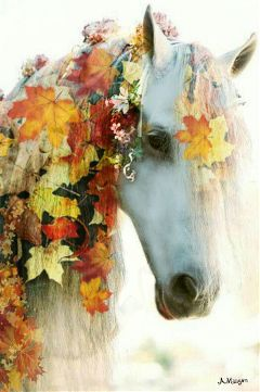 wapautumnvibes colorsplash colorful nature horse