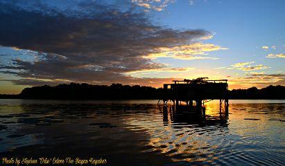 bayoukayaker nature photography summer