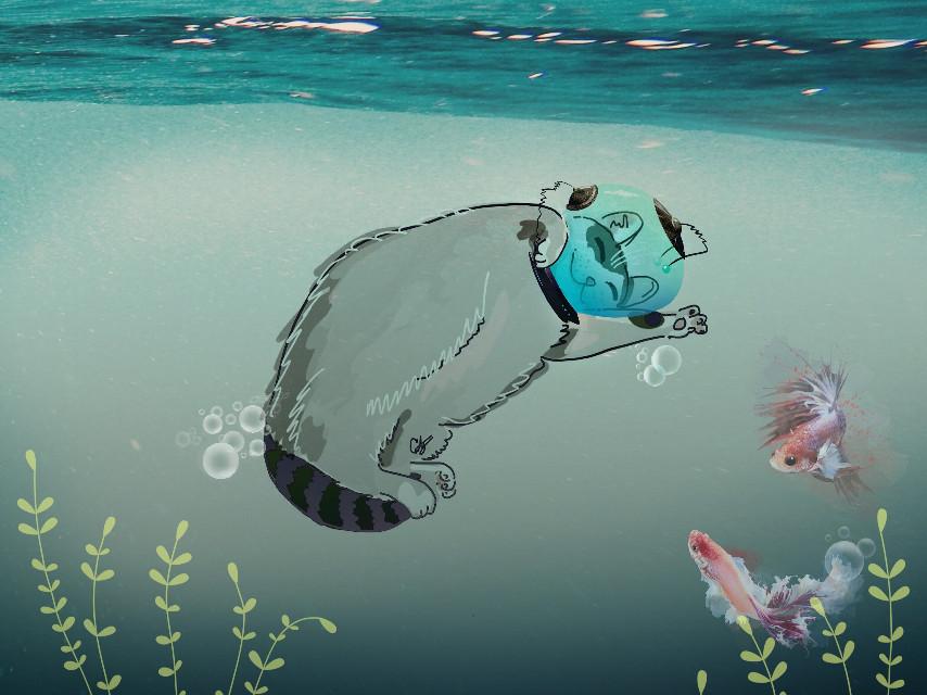 Deep sea kitty 😊 #freetoedit #water #bubbles #underwater #myedit @cristiantg1 original