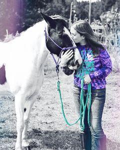 colorful horse portrait colorsplash blackandwhite