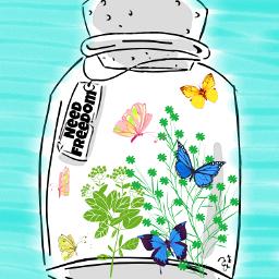 freetoedit freedom butterflys plant