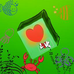freetoedit love cute nature fish