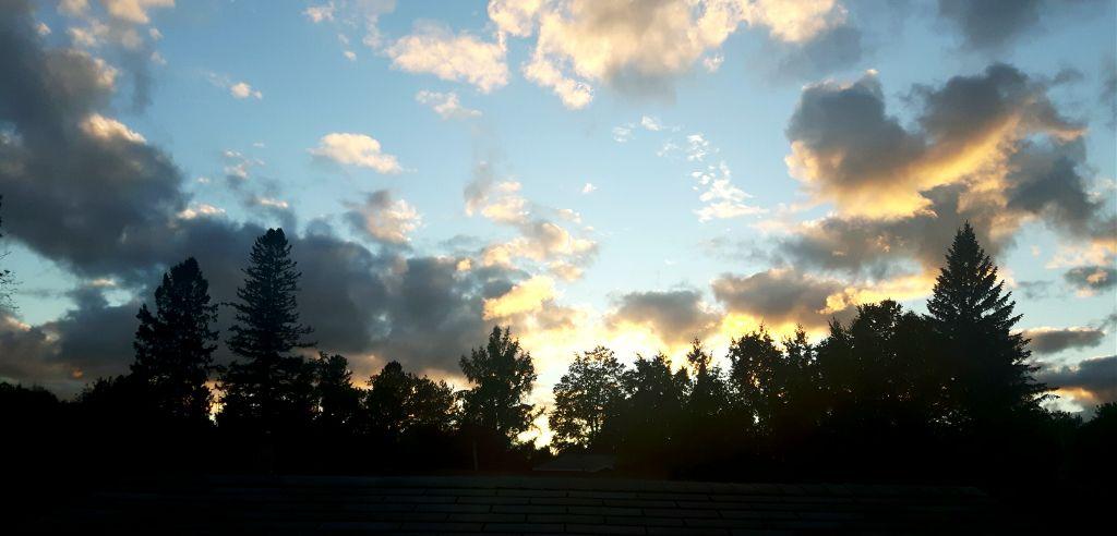 sun sunset backyard outdoors beautiful scenery photog