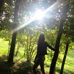 sun sunlight