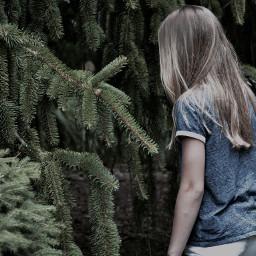 dpctrees freetoedit