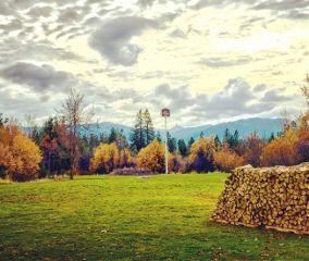 california nature photography fallcolors autumnleaves